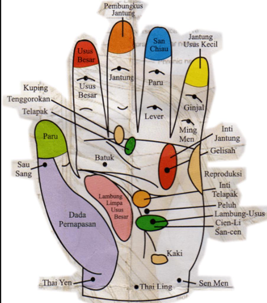 Refleksi Tangan