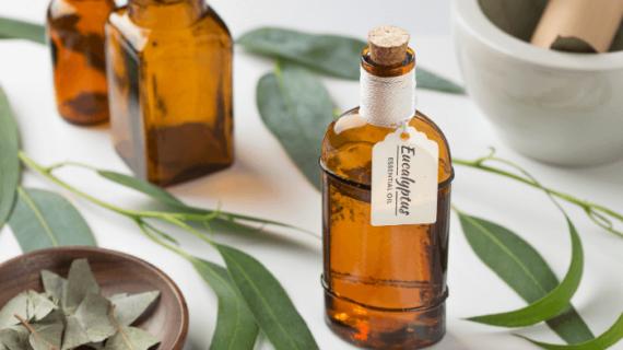 32 Jenis Minyak Esensial Aromaterapi Untuk Pijat Beserta Manfaatnya